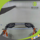 Système alimentant de porc automatique à chaînes de qualité Using in&#160 ; Ferme moderne à vendre