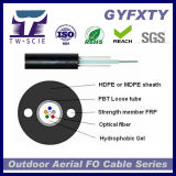UIT-T optique G652D de faisceau du câble GYXTW 24 de fibre d'extérieur blindé de SM