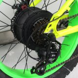 Bicyclette électrique de gros pneu de pouvoir vert de 20 pouces