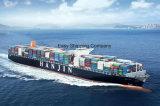 Consolidar o serviço de transporte eficiente do oceano (LCL/FCL) de China a Alemanha