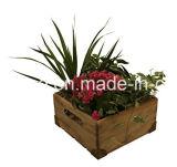 Madera de pino natural Cajas Decorativas cuadros con mango y de la esquina de metal