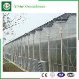 Van de multi-Spanwijdte van de tuin/van het Landbouwbedrijf/van de Tunnel nam de Serre van het PC- Blad voor/Aardappel toe