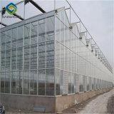 Structure en acier galvanisé Sainpoly agricole serre en verre