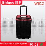Krachtige Spreker van karaoke 12 '' van Bluetooth van de Aankomst van Shinco 2018 de Professionele Nieuwe Draadloze