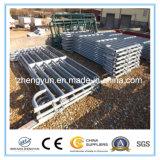 미국에 중국 공급자 가축 가축 위원회 또는 강철 가축 위원회