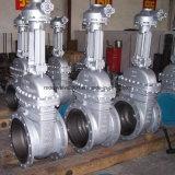Valvola a saracinesca di Industria dell'acciaio di getto
