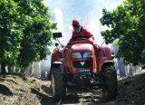 Frutteto di Foton Lovol, vigna, trattore dell'HP 70 per il servizio dell'America latina
