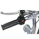 250W鉛酸蓄電池のドラム・ブレーキ(MES-300-1)が付いている電気移動性のスクーター