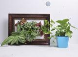 Moldura de foto com plantas reais