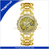 Vigilanza del quarzo del braccialetto Psd-2260 con la manopola dentellare del Mop