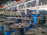 Wire d'acciaio Industrial Furnace per Steel Cord