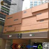 Revêtement décoratif de mur de chambres de hôtel pour l'extérieur (TF-04E)