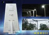 80W 높은 광도 Bridgelux는 태양 전지판 태양 가로등을 잘게 썬다