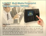 Fingerabdruck Zeit Attendance mit Wireless Communication (TFT500)