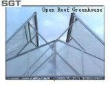 4mm Low Iron Tempered Glass per Open Roof Greenhouse (lati, timpano)