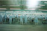 Tamanho Grande Sala Fria de baixa temperatura de armazenamento congelado e Gele Equipamentos para a fábrica de transformação de peixe e carne no Centro de Distribuição de Logística