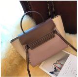 Senhora Bolsa da forma, saco do desenhador, saco das mulheres, senhora quente Saco do Sell (WDL0071)