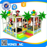 Equipamento de madeira interno do campo de jogos dos miúdos grandes (YL-B015)