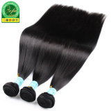 Natural humanly Hair Brazilian Remy Hair Bulk Hair Weaves