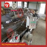 Vegetais de frutos de tomate e de secagem da máquina de secagem da máquina de secagem