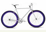 スマートな都市6061アルミニウムフレームが付いている固定ギヤバイク