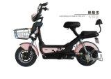 Qualitäts-elektrischer Roller (kühl)