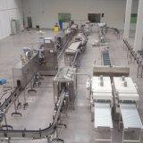 De Lopende band van de Transportband van de Riem van de Rang van het Voedsel van het Roestvrij staal van de Link van Plast/van de Verwerking van het Voedsel