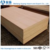 Pegamento WBP 18 mm de la melamina, madera contrachapada frente