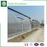 Serra idroponica di irrigazione del migliore policarbonato commerciale solare di prezzi