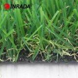 中国の屋外の庭の景色の草