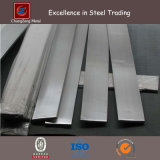 304 Barre en métal plat inoxydable laminé à chaud (CZ-F47)