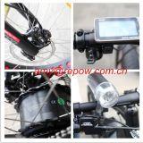 48V/11ah/350W Alの合金のリチウム電池の電気自転車(BN2606)