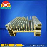 Высококачественный алюминиевый профиль радиатор для EPS
