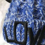 Шлем способа мыши зимы милый