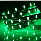 Striscia bianca di SMD 5630 60LEDs/M LED