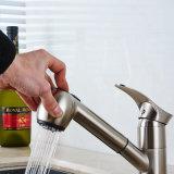 Grifo aplicado con brocha níquel del fregadero del lavabo de la cocina de la casa de Flg