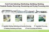 Wacs-2000 totalmente automática da linha de processamento de saladas de vegetais de folha de Corte de Lavagem da linha de lavagem Root-Stock Secagem secagem de corte a linha de processamento de embalagem
