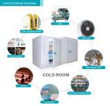 Éléments se condensants populaires de Regrigeration de chambre froide