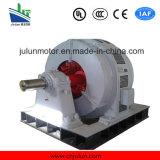 大型の高圧傷回転子のスリップリング3-Phase非同期AC電気誘導電動機Yr800-8/1180-800kw