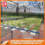 Chambre verte de film plastique de potager de culture hydroponique d'agriculture