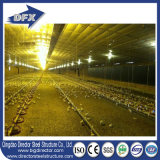 鉄骨構造の養鶏場のインストール低価格
