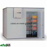 Cámara fría logística, congeladora, conservación en cámara frigorífica, el panel de emparedado del poliuretano