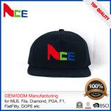 Impresión Equipada moda del sombrero (ACEW100)