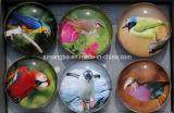 Botón magnético vidrio decorativo para la Pizarra