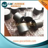 Placas del desgaste del cilindro del carburo de tungsteno