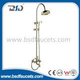 Insieme d'ottone dell'acquazzone di alta qualità popolare con l'acquazzone d'ottone della maniglia