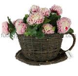 Цветочный горшок сада чашки чая вербы декоративный