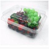 Eco-Friendly Pet Caixa salada de frutas clara contêiner plástico descartável