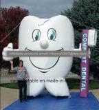 Replica gonfiabile del modello del dente della visualizzazione esterna di condizione grande da vendere