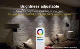 IP54 imprägniern intelligentes Telefon APP gesteuertes 15W RGB+CCT LED Downlight